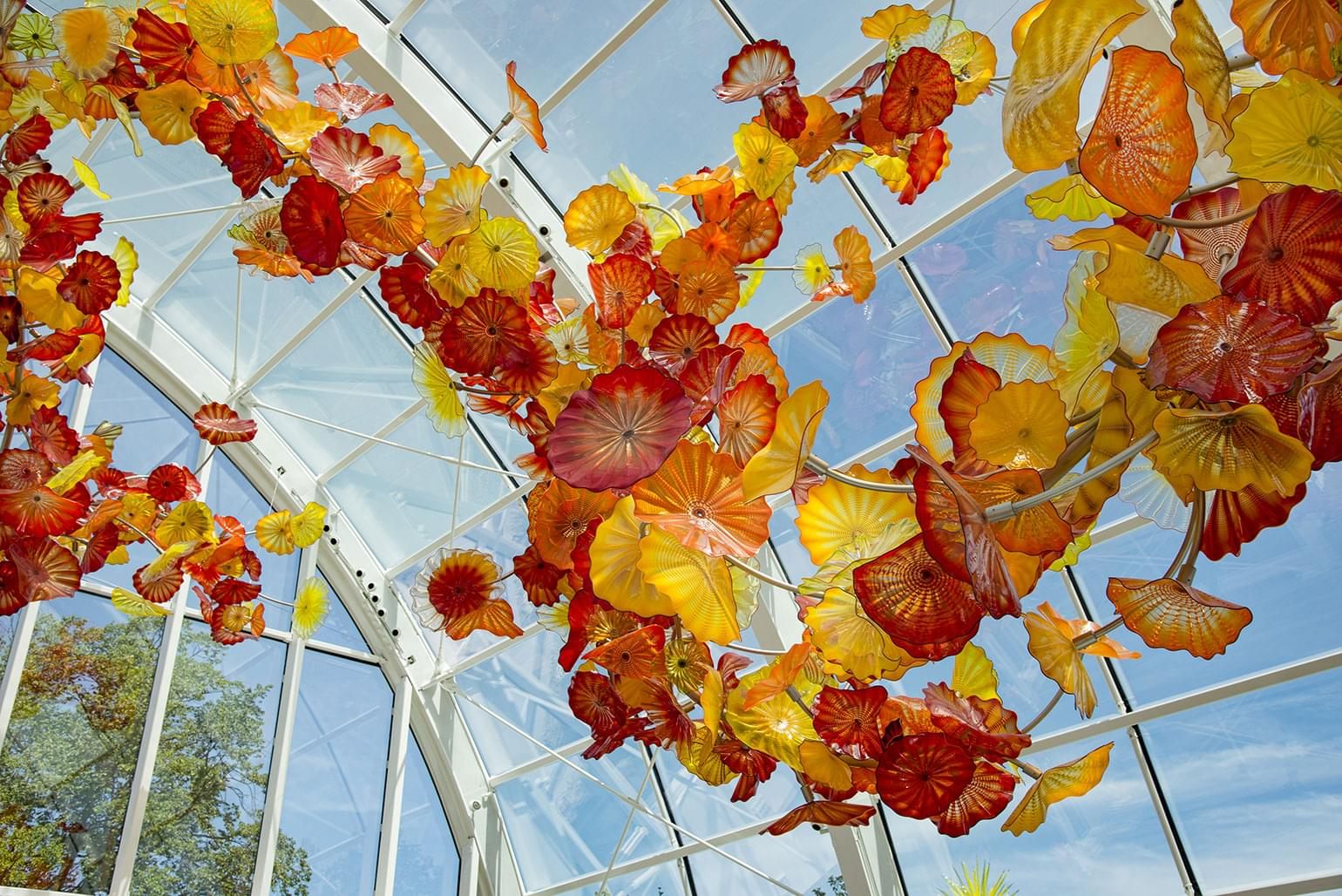 Large Chiluly glass exhibit inside large glass sunroom at the foot of the Space Needle.