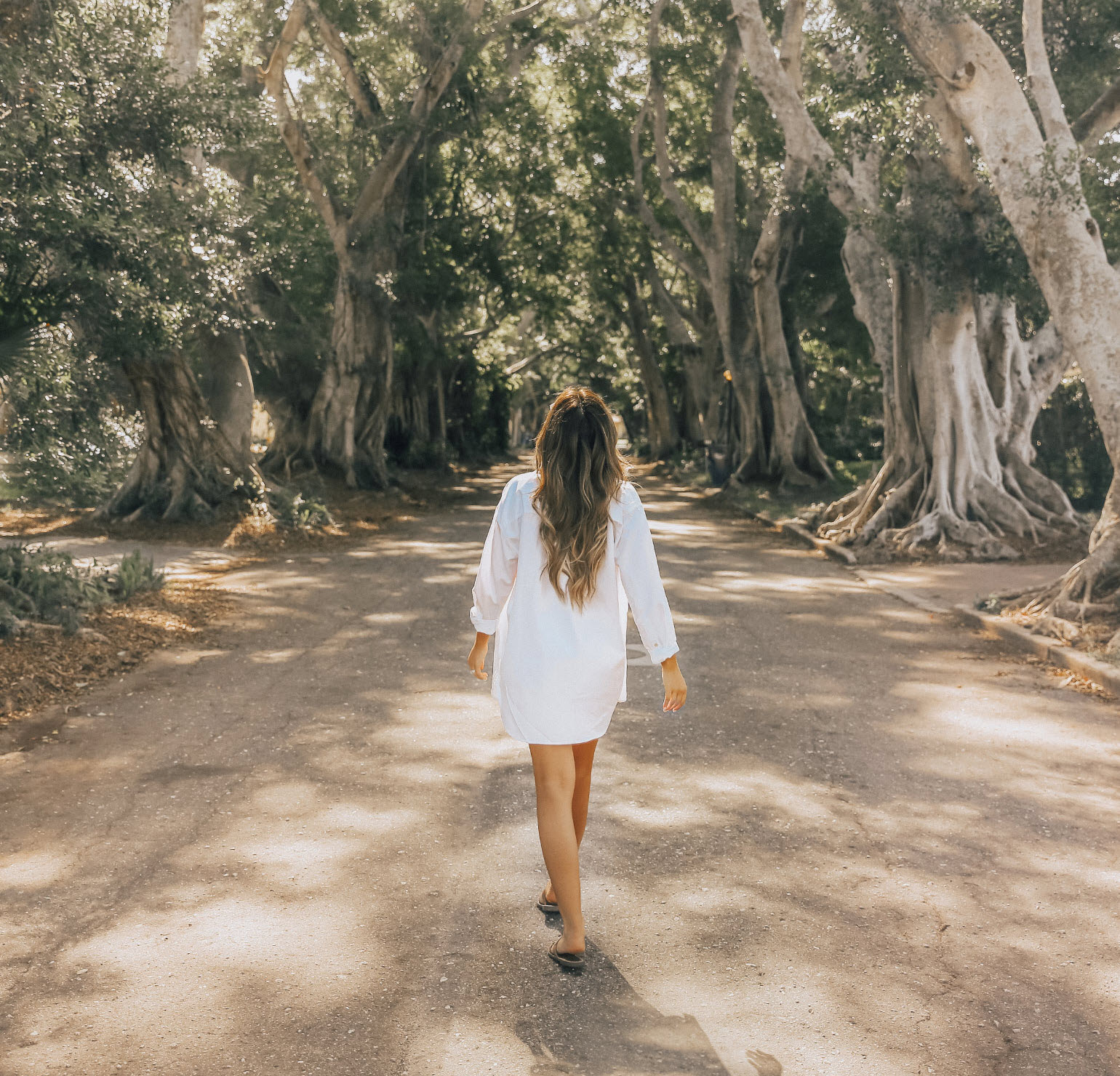 Blogger walking through the banyan trees located in bradenton