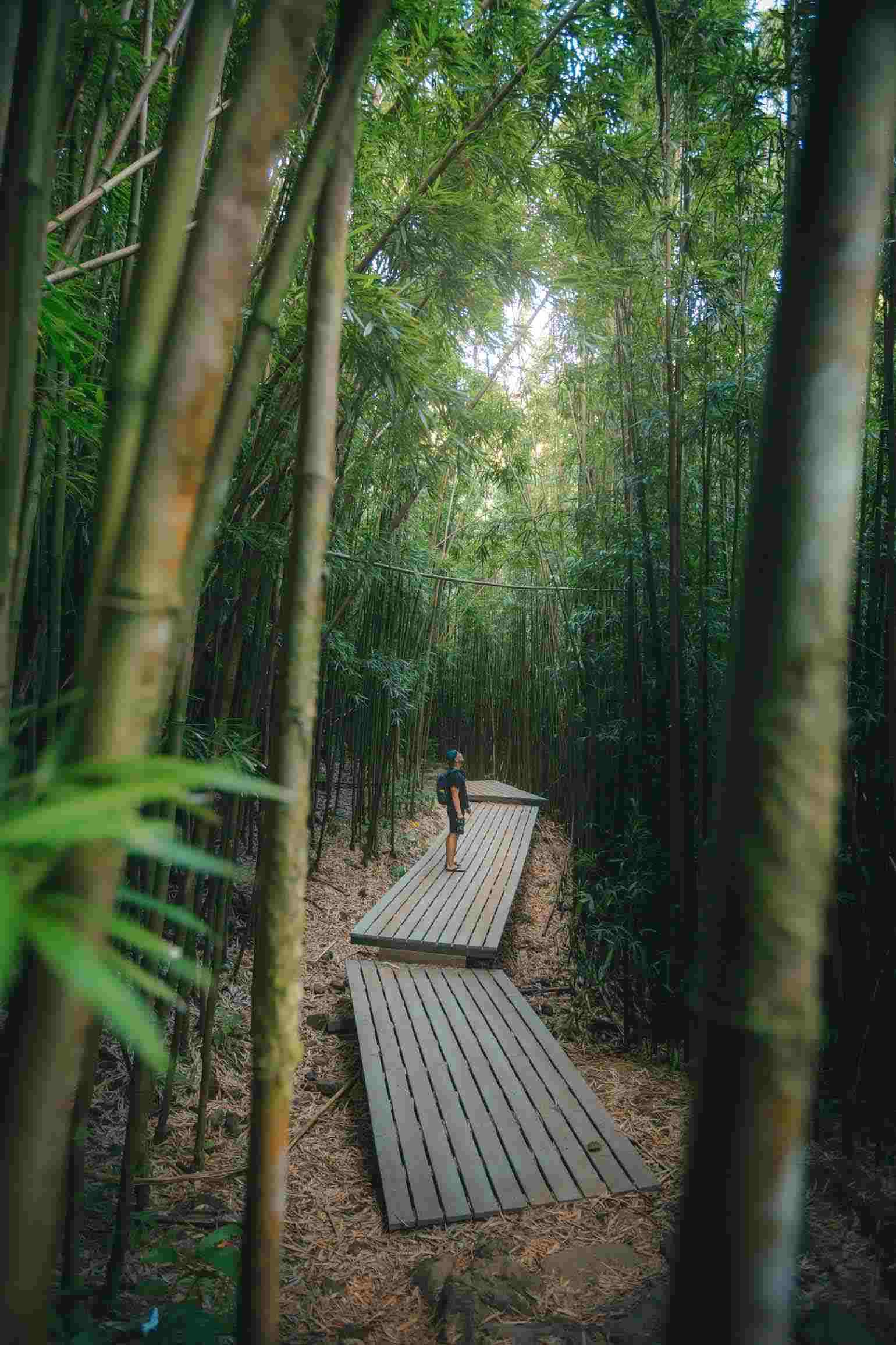 Pipiwei Trail